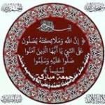 Tamer Elshaaer Profile Picture