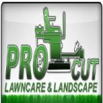 Pro Cut Lawn Care and Landscape